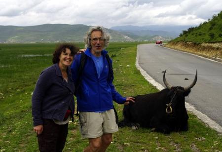 Avis Badard Yunnan