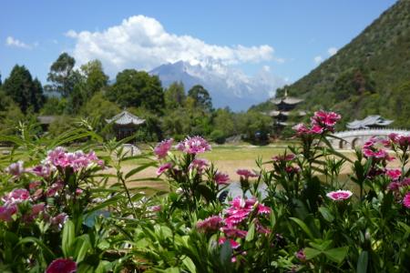 Avis Girard Yunnan