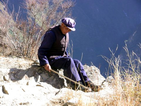 Avis Poitral Yunnan
