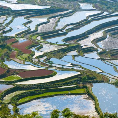 Famille PELLE – Sud Yunnan (5 jours)