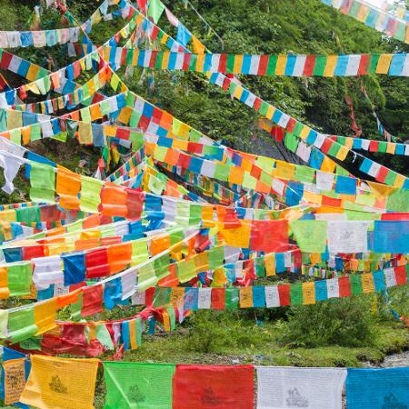 Mireille & Jean-Do Fougère – Circuit Yunnan et Tibet (22 jours)