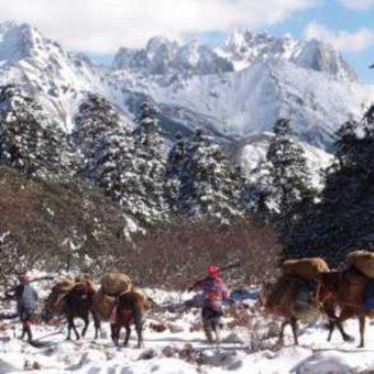 circuit_caravanes-tibetaines-shangri-la-25