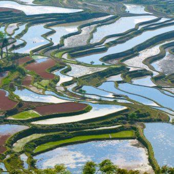 circuit_paysages-minorites-yunnan-3