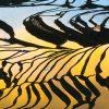 circuit_paysages-minorites-yunnan-4