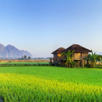 circuit_voyage-nord-laos-nord-yunnan-8