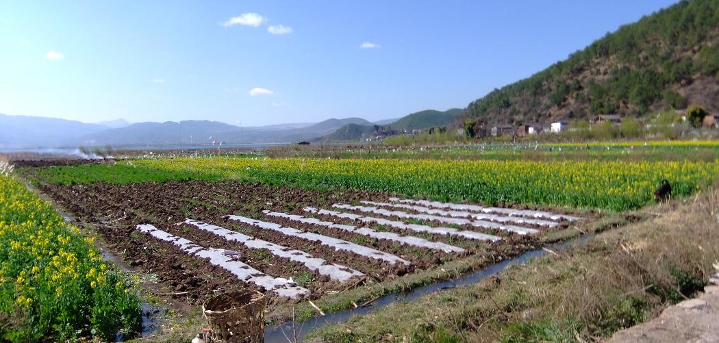 Famille DEMAY – Nord Yunnan en liberté (10 jours)