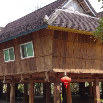 yunnan_xishuangbanna_ganlanba-5