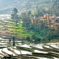 Village de Jingkou 箐口村