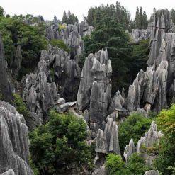 Forêt de Pierre 石林