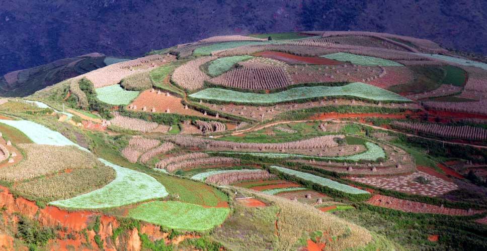 Groupe Jacquet – Circuit à travers le Yunnan (15 jours)